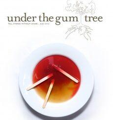under the gum tree, sacramento editor, sacramento literary, janna marlies maron, robin martin